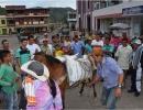 Dia-de-campesino---13.jpg